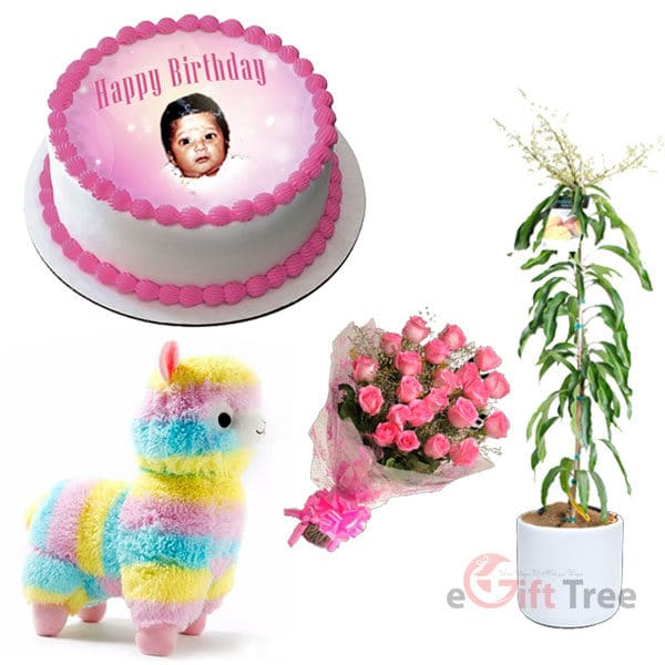 Birthday Cake with Rainbow Alpaca Plush Sheep Toy