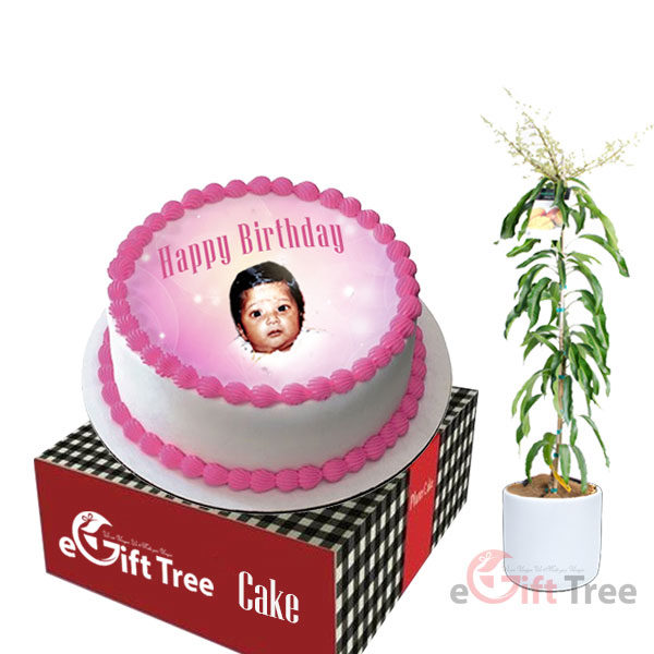 Pink Round Cake with Photo Print 1kg