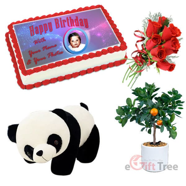 Birthday Cake with Panda Bear Doll